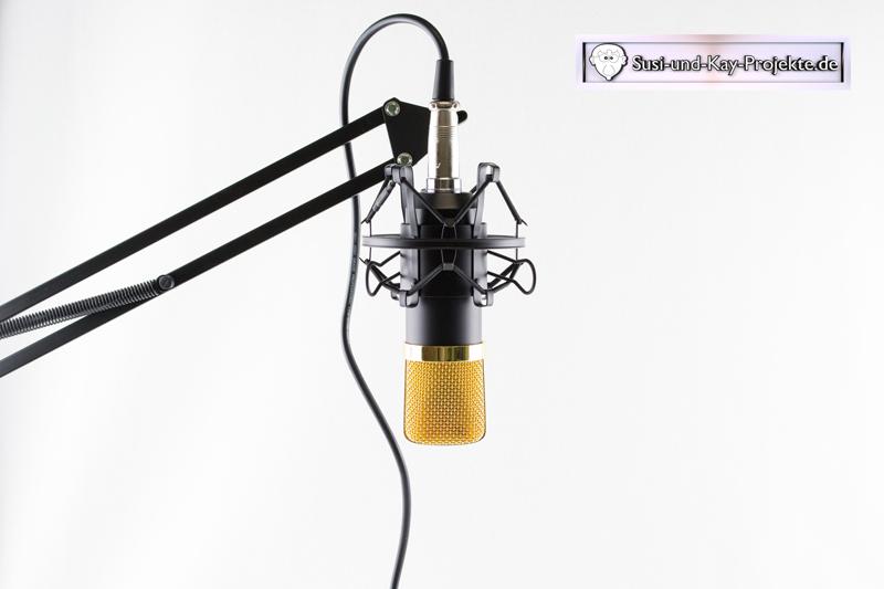 mikrofon-ohne-popschutz