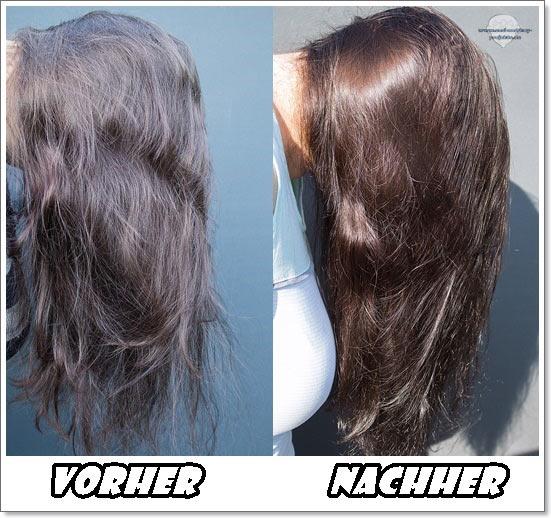 Expert erfahrung color dunkelblond Haarfärbemittel Test