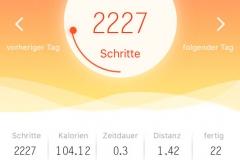 Fitness-Tracker-App2