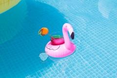 pelikan-klein-wasser-spaß