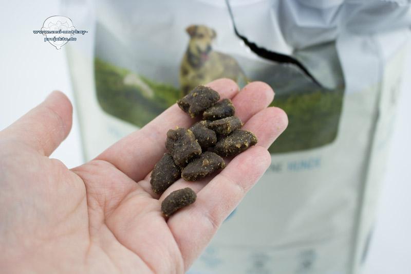 Hunde-Futter-Test-Stückchen