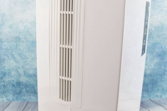 Schimmel-entfernen-mit-Luftentfeuchter