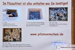 Pilzmännchen Pilzzuchtset Bio Champignon beschreibung