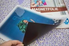 Magnetfolie-Meerjungfrau-drucken