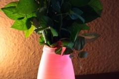 Aukey-Farbwechsellampe-Fernbedienung