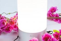 Farbwechsel-Lampe-Aukey-Mittlere-Lichtstufe