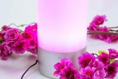 Farbwechsel-Lampe-Aukey-Pink