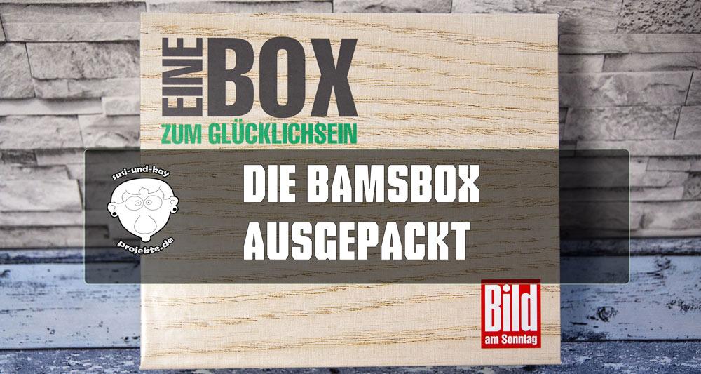 BamS-Box-thump-Beitrag