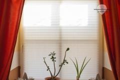 Raumtextilienshop-Sensuna-Maßplissee-Tageslicht