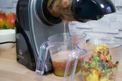 Früchte-Entsafter-Slow-Juicer-Nutrilovers