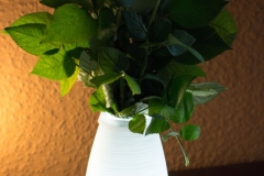Aukey-Weiße-Lampe-mit-Fernbedienung