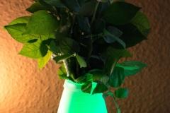 Farbwechsel--Fernbedienung