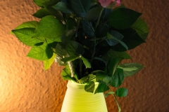 Lampe-im-Test-Fernbedienung