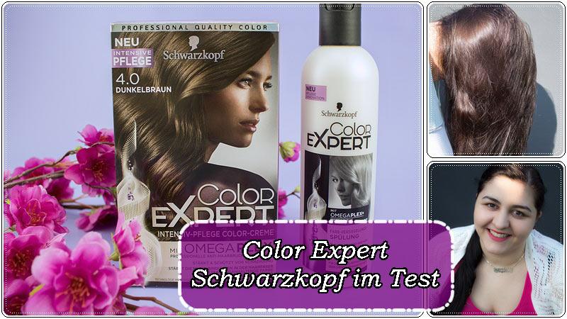 Expert erfahrung color dunkelblond Leseratten: (Produkttest)